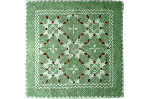 """Feathered Star"" in Sage-Red-White Cover-Up Quilt 54"" x 54"""