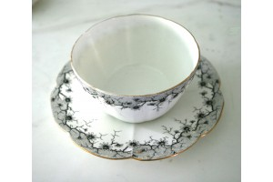 Porcelain. Rare Shelly China set Designed by Wileman England 1910-1925 DELICATE AND BEAUTIFUL(see 211)